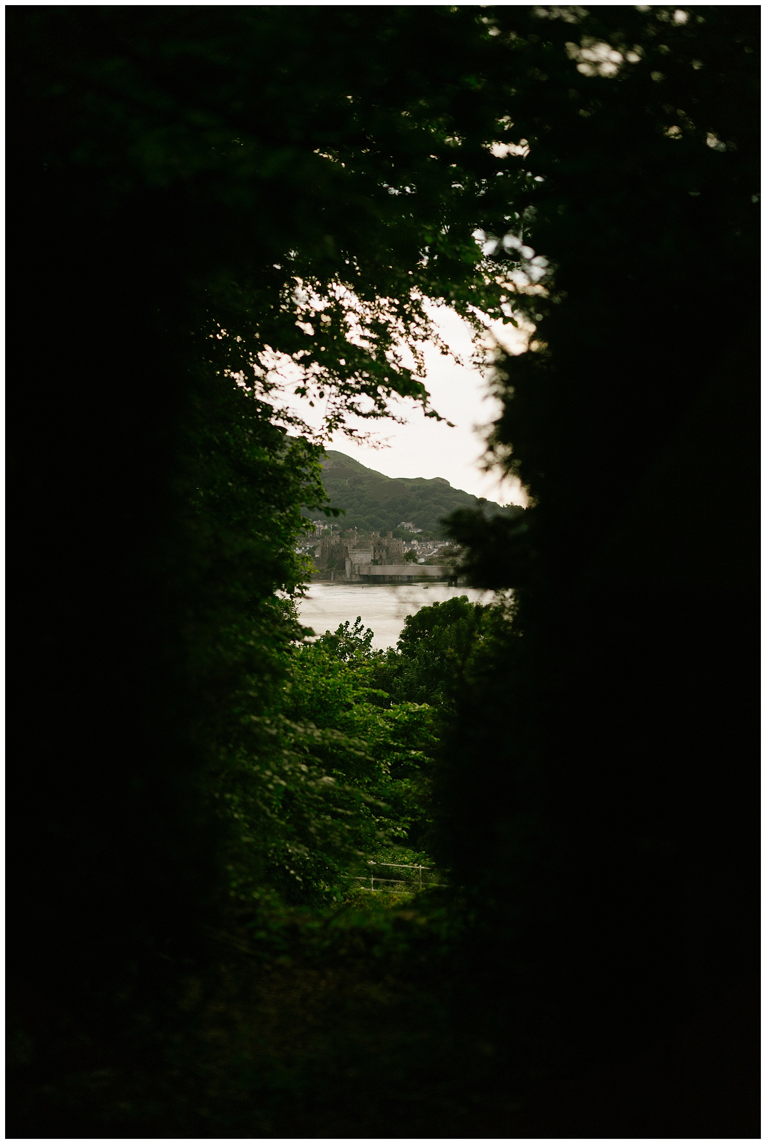 Glimpse of Conwy town through the dense trees