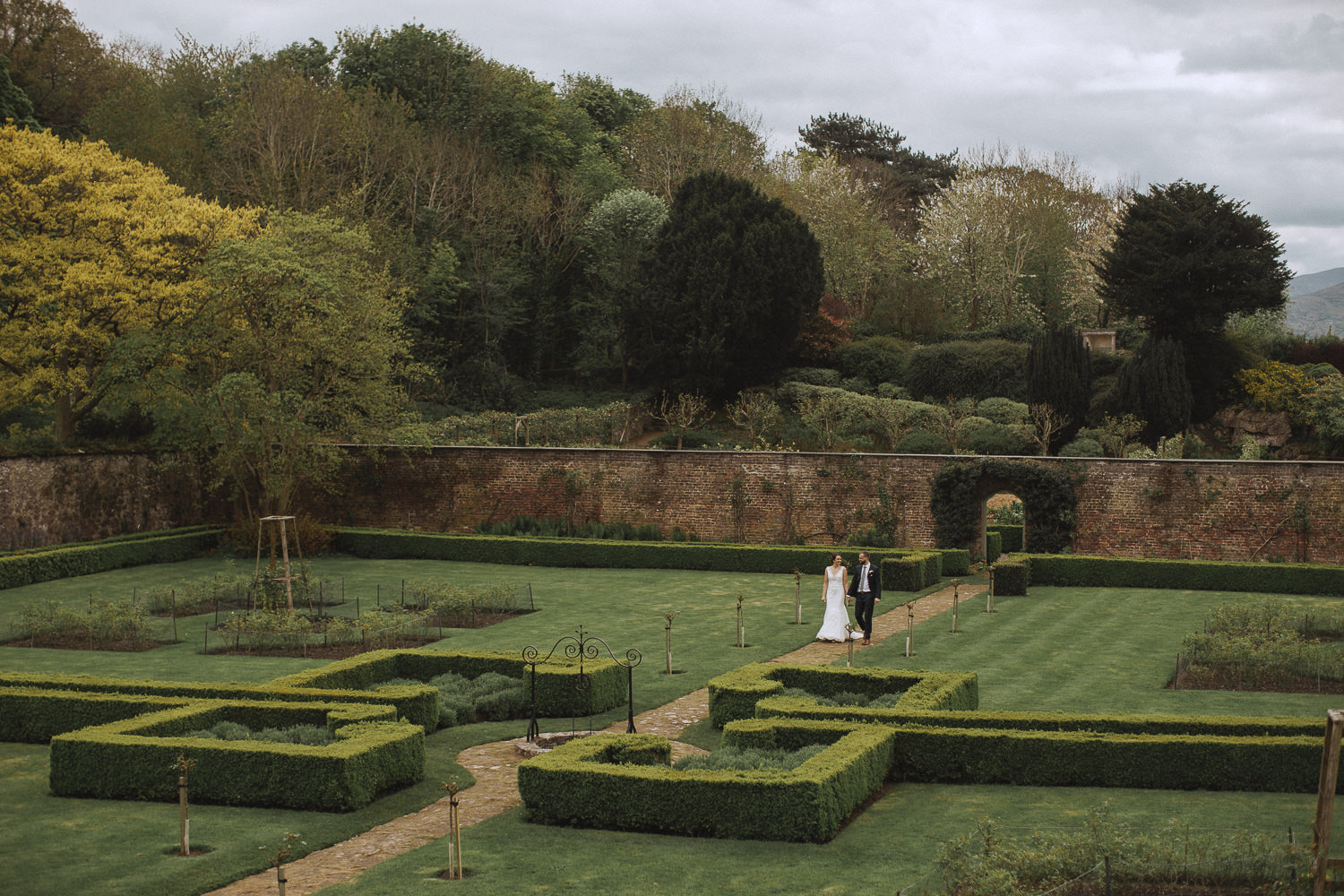 newly married couple walk the gardens at bodysgallen hall