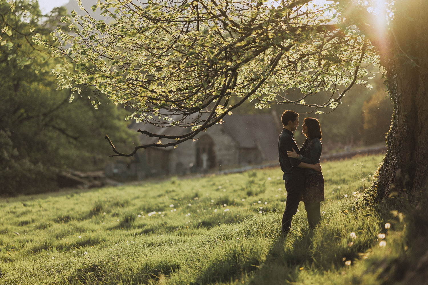 engaged couple in Llangollen under a tree
