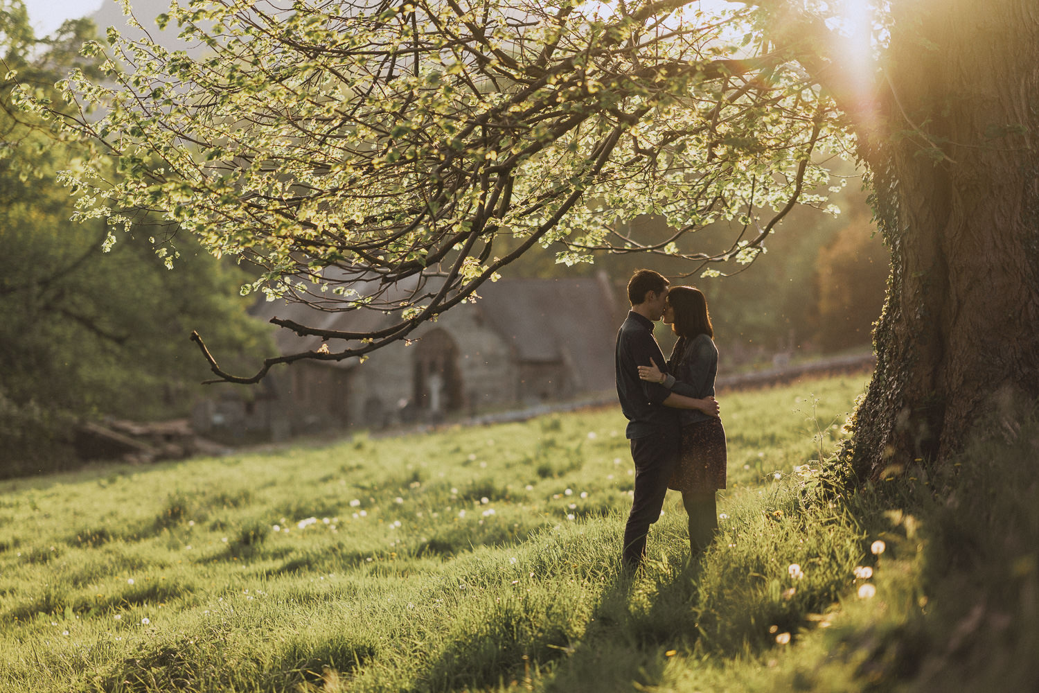 couple under a sunset lit tree in llangollen