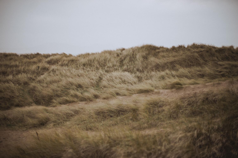 Newborough Beach Dunes